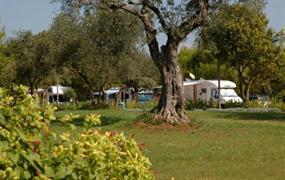 Campsite Porto Sole