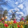 Amsterdam a největší kvetoucí park v Evropě Keukenhof ***