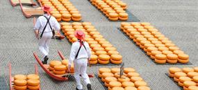 Za chutí sýrů, mlýny do Amsterdamu a Zaanse Schans s návštěvou města Alkmaar