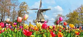 Brusel, Amsterdam, Zaanse Schans a park Keukenhof