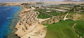 AA Grand Oasis