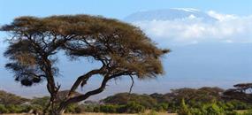 Samburu, Lake Nakuru a Masai Mara (luxusní kempy)