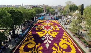 ISTANBUL - FESTIVAL TULIPÁNŮ S PRŮVODCEM-H.NANDA