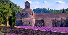 Levandulová Provence - Avignon, Marseille, Pontu du Gard a Nimes