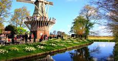 Květinový Keukenhof, Amsterdam a sýry s noclehem v hotelu se snídaní
