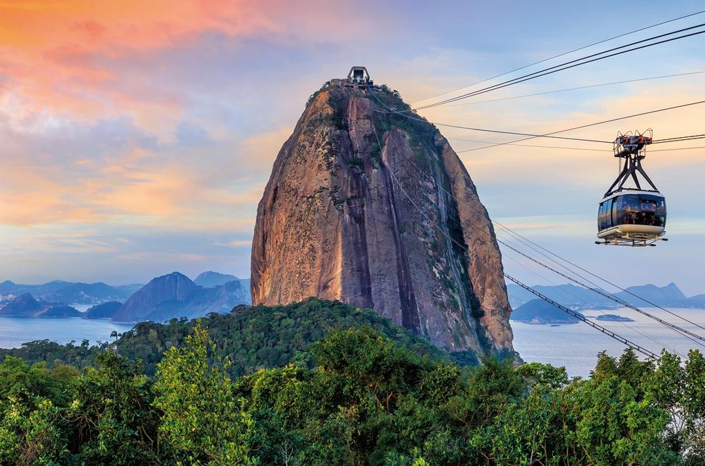 brazilské velké ptáky