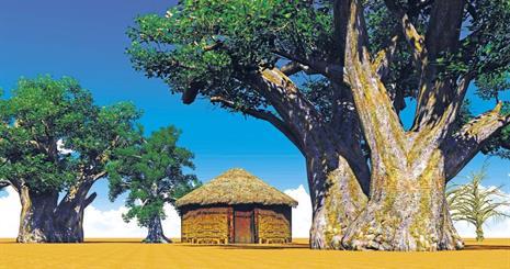 Okruh Senegalem ve stínu baobabu
