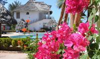 Hotel Waridi Beach ****