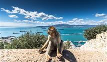 Kouzelná Černá Hora