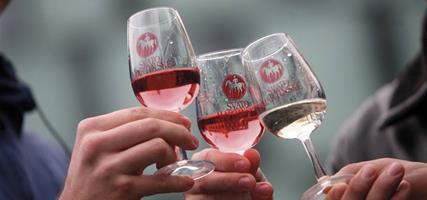 Svatomartinská husa, vína a cimbál v Hustopečích a ve Skalici