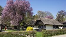 MORAVSKE TOPLICE relax v Terme 3000 (rustikální domky typu bungalov Termal 3)