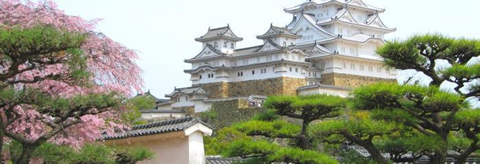 JAPONSKO – okruh na Honšú, památky UNESCO i metropole v době květu sakur