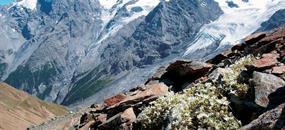 Dolomity se slevovou kartou - Adamello, Brenta, Presanella