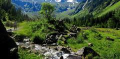 Alpy pro seniory - nádherná příroda Tyrolských Alp