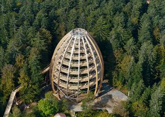 Bavorský les - Stezka v korunách stromů a lesní ZOO
