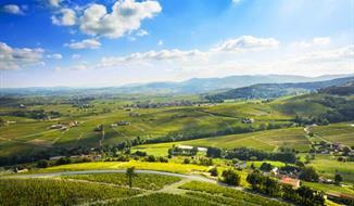 Beaujolais a Burgundsko, kláštery a slavnost vína