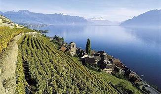 Švýcarská rozmanitost