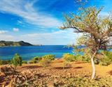 Indonésie, Bali, Flores, Komodo, Rinca - Z Bali na ostrovy draků a exotický Flores
