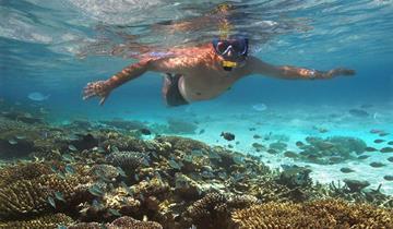 Maledivy - Pohoda na prosluněných Maledivách - tropickém ráji v Indickém oceánu