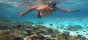 Pohoda na prosluněných Maledivách - tropickém ráji v Indickém oceánu