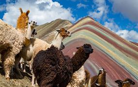 Pohodový týden u Machu Picchu s návštěvou Duhových hor