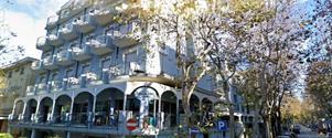 Hotel Feldberg