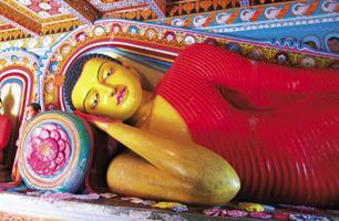 Zeleným rájem Srí Lanky