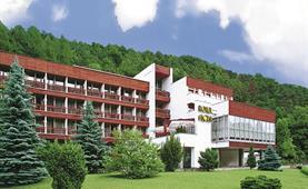 Hotel FLORA, Trenčianské Teplice
