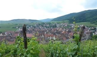 Za vínem a krásami Burgundska a kraje Beaujolais (autobusem)