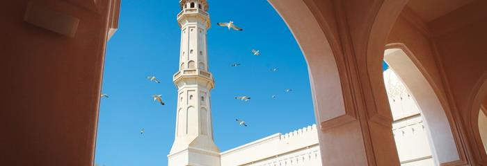 Pouští a oázami za krásami Ománu