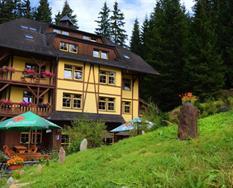 Hotel Modrava ***