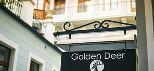 Hotel U Zlatého jelena ****