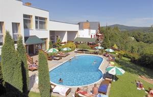 Lázeňský & Wellness Hotel Niva