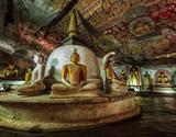 Chutě a vůně Srí Lanky