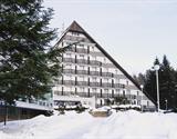 Ski hotel Vysočina ***