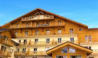 REZIDENCE L´OURS BLANC (Les 2 Alpes)