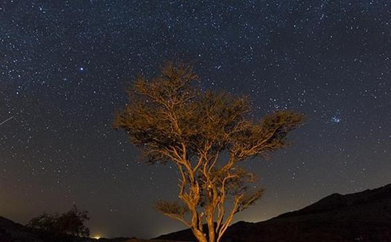 Trek v Jordánsku - 8 dní / 7 nocí