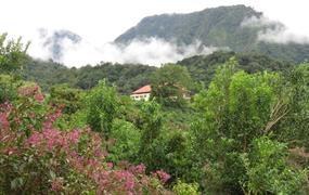 Za stále zelenou přírodou Panamy