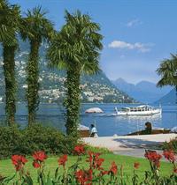 Vinice, palmy a jezera pod horskými štíty ***