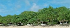 Sandy Beach Resort, Foa, Ha´apai