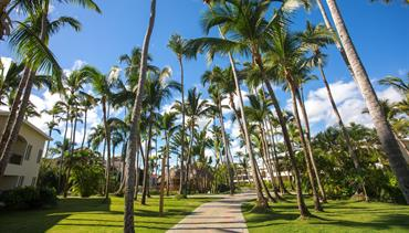 Impressive Resorts & SPAS Punta Cana