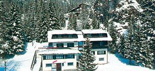 Residence Regina Dolomiti ***