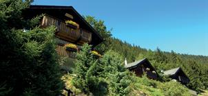 Prázdninová vesnička Tschuggen ***