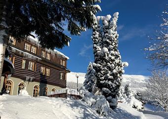 Alpský Hotel - bez skipasu