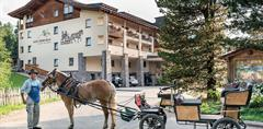Hotel Steger-Dellai