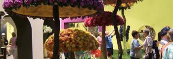 Tulln - Květinový veletrh