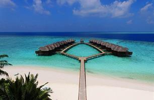 Hotel Fihalhohi Island Resort & Spa