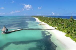 Resort Canareef Maldives