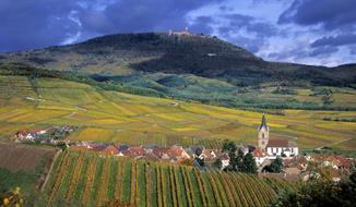 Alsasko, Švýcarsko a Černý les - exlusivně nejen za vínem do tří zemí