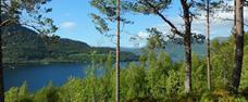 Dovolená v Norsku s možností rybaření ve fjordu